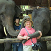 Shirley, Maesa Elephant Camp, Thailand, 10/11/2013