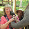 Shirley getting a kiss, Maesa Elephant Camp, Thailand, 10/11/2013