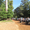 Many people coming to see World Heritage site of Angkor Thom which was built in the 11th or 12th century, Cambodia. 11/6/2013