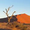 Namib Naukluft Park with sand dunes of Sossusviel, Namibia, 3/30/2014