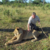 Ken petting a 14 mo. old lion! Lion Encounter! Livingston, Zambia, 4/6/2014