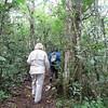 Shirley looking for lemurs! Andasibe-Mantadia National Park, Madagascar, 4/10/2014