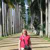 Shirley and Royal Palms, Botanical Garden, Rio de Janerio, 2/11/2018