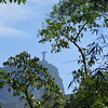 Christ the Redeemer seen from the Botanical Garden, Rio de Janerio, 2/11/2018