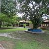 Rio Claro Lodge, Pantanal area of Brazil, 2/19/2018