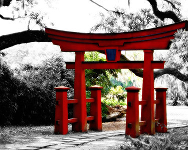 Avery Island, LA - Jungle Gardens