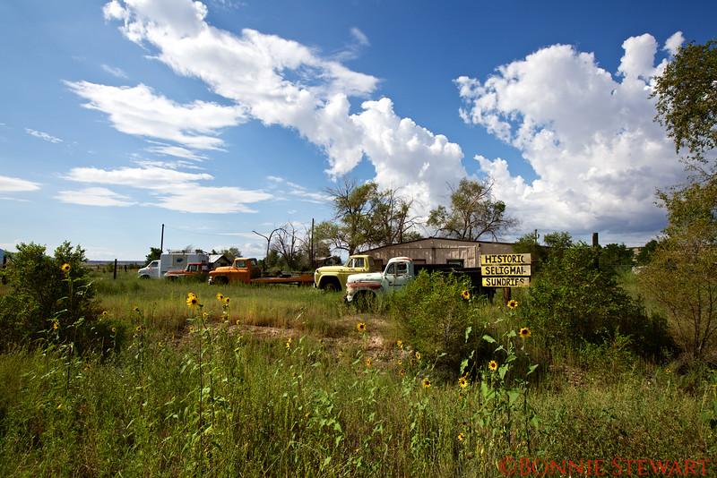 Sleigman on Route 66