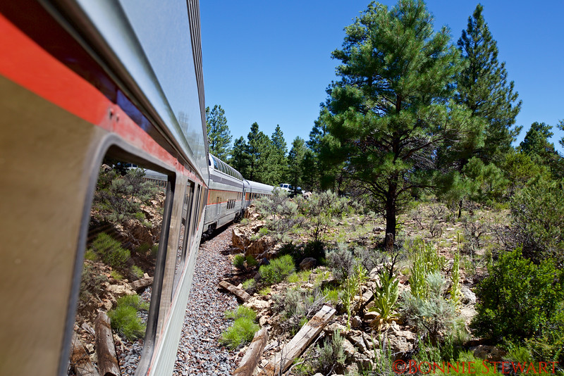 View of the Grand Canyon Railway train cars