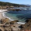 Pacific Coast at Monterey