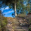 Peaceful stairs at Deer Park Buddhist Monastery