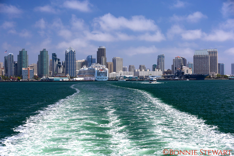 View of San Diego from the Water