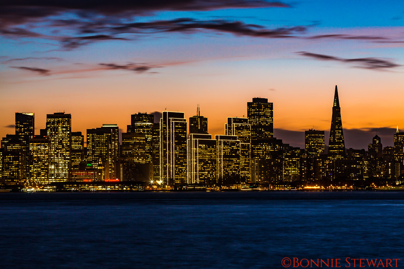 City Lights of San Francisco