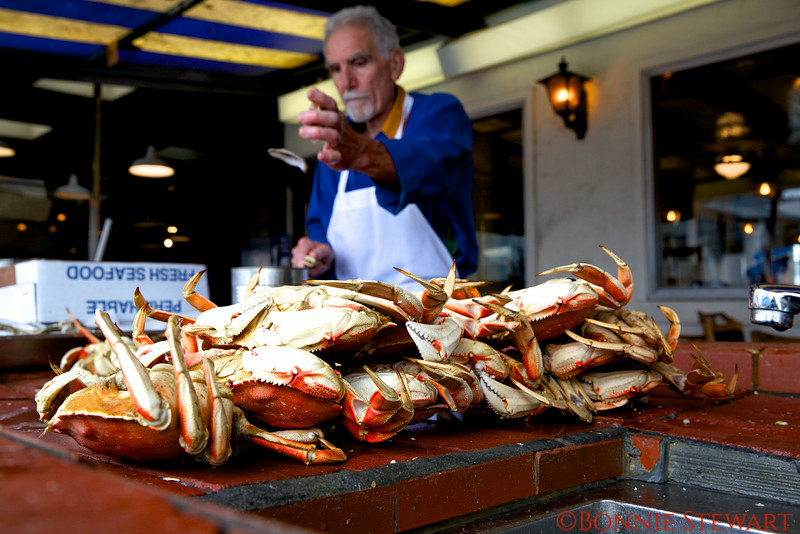 Cleaning crabs at Fisherman's Wharf