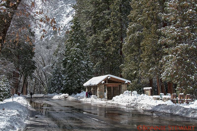 Yosemite Falls Rest Area