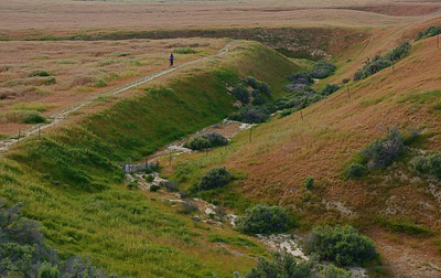 The San Andres Fault passes through Carrizo Plain. At Wallace Creek, you can see how the stream bed has been shifted due the the movement of the Pacific and North American Plates.