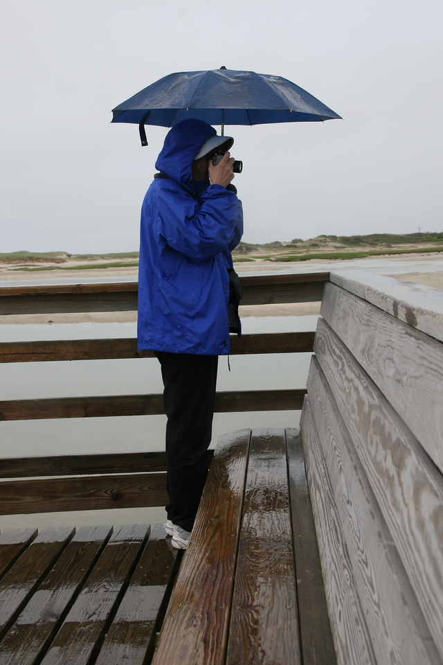 The Photographer in Cape Cod