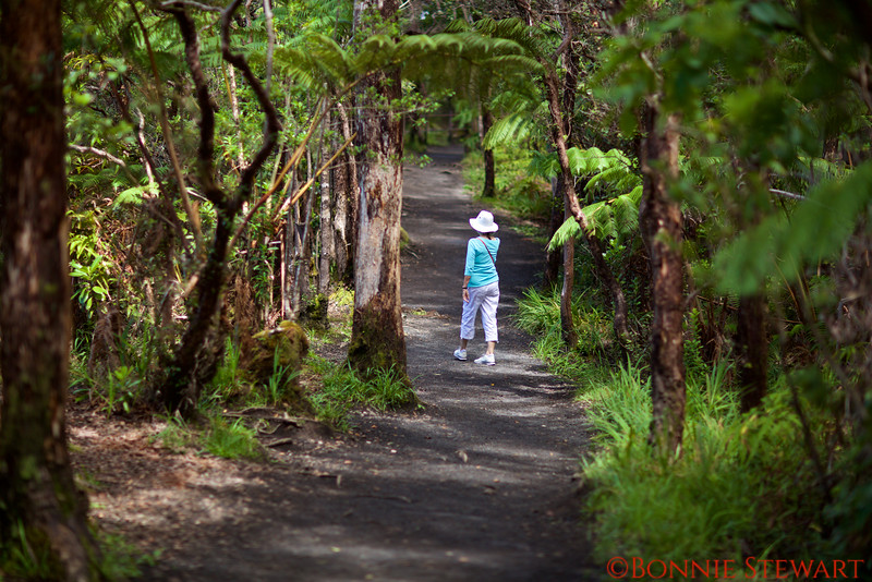 Frances Lyons walking in the Rain Forest