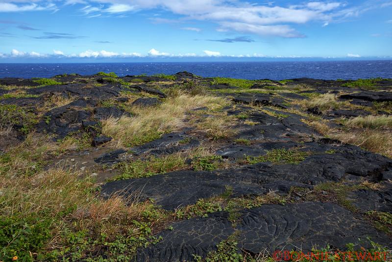 Lava Flow nearing the ocean