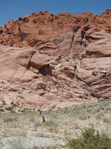 Rock Formations Closeup