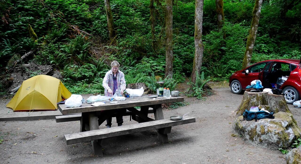 Mt Baker area- Douglas Fir Campground near Glacier
