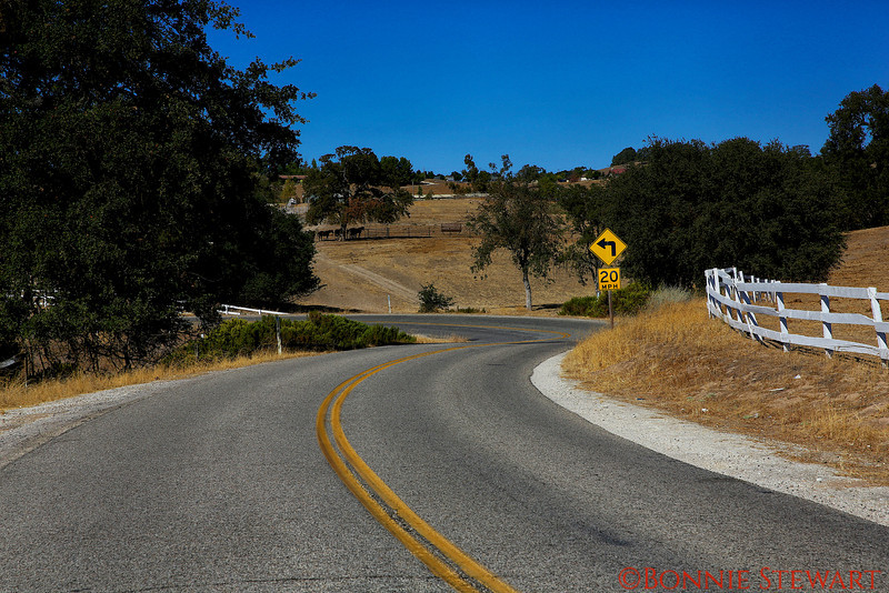 Country lane in Paso Robles