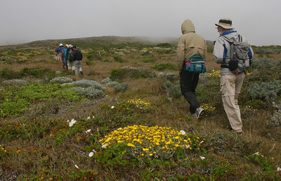 It is a long 7-mile hike to Pt. Bennett to see the seals and sea lions. And then you have to walk back.
