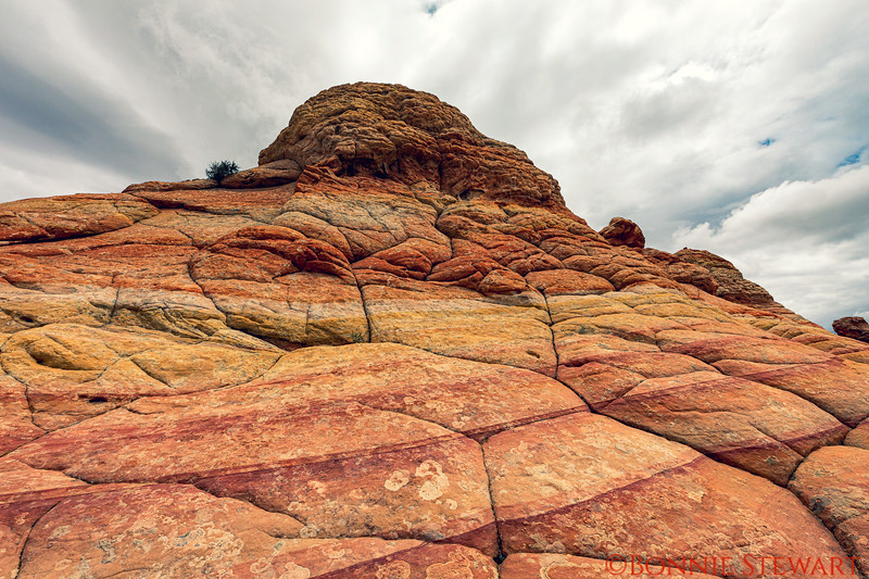 """Rock formations and color - the yellow """"brick"""" road and a Red road both in sandstone"""