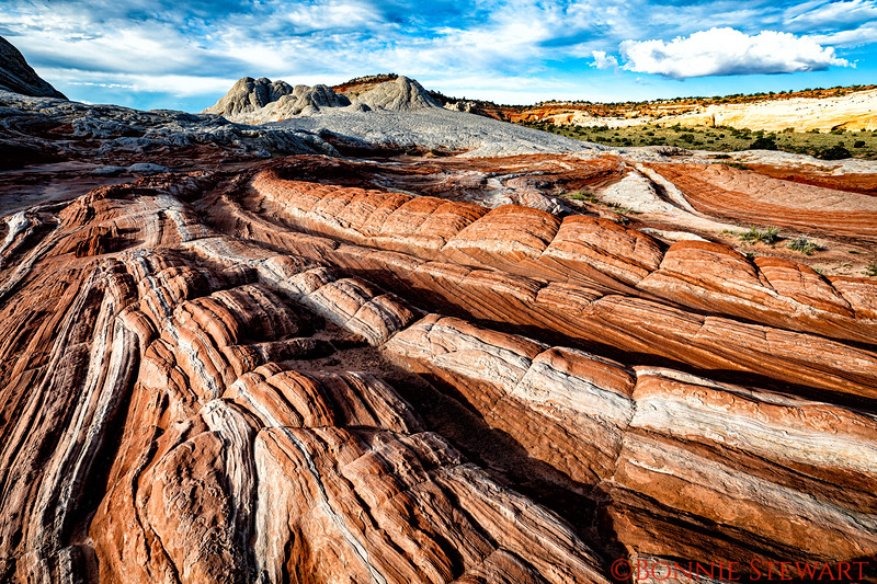 Endless rock formations in White Pocket