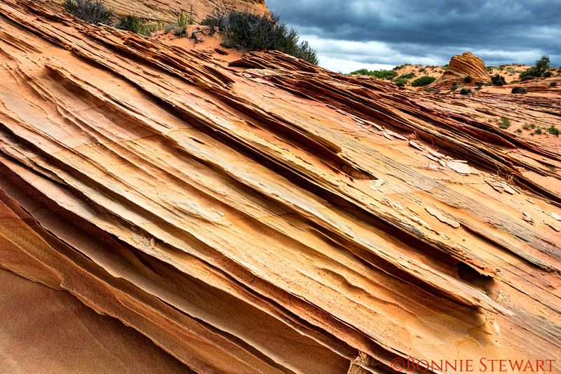 Close up of the sandstone fins