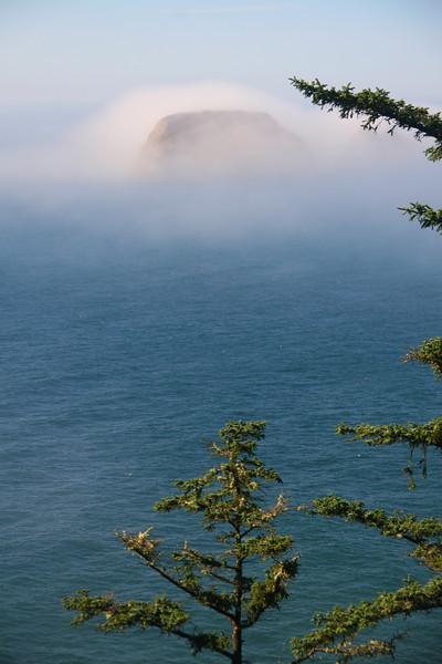 Oregon Coast - Misty island
