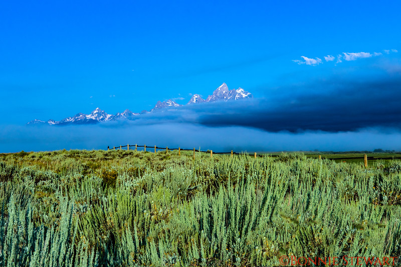 Grand Tetons disappearing in a fog bank