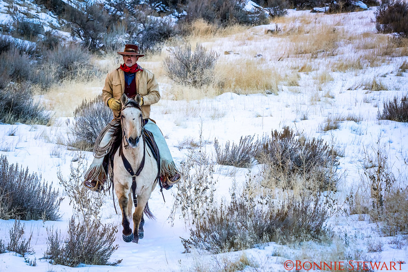 Wrangler Tom running the snowy canyon