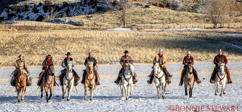 Wranglers preparing to herd wild horses - or maybe not too wild.  Left to right: Marijn, Rebecca, Mel, Lance, Tom (head wrangler), Augustus, Lauren, Eric