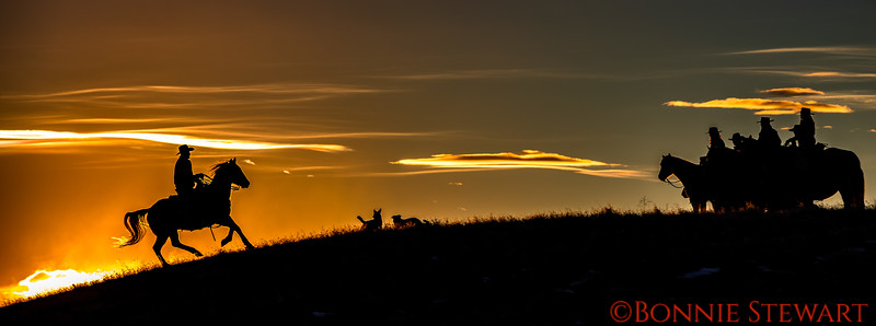 Silhouette of the Hideout Wranglers and dogs
