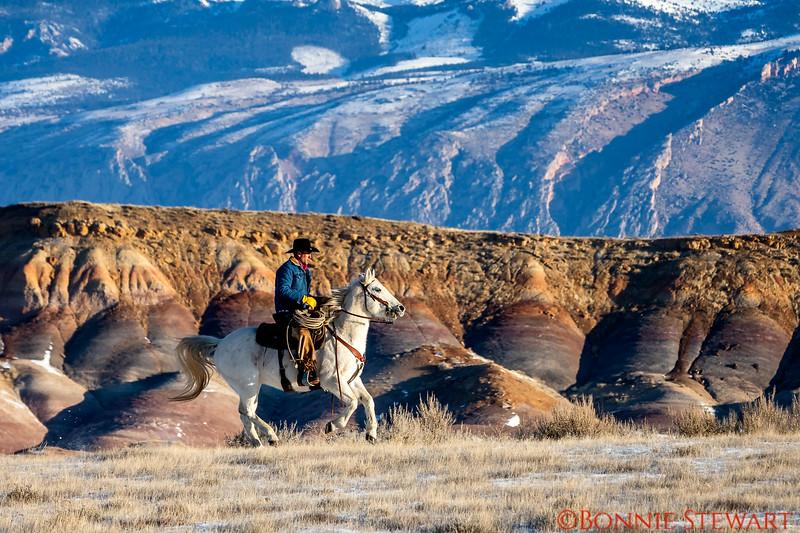 Wrangler Mel riding