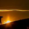 Wrangler silhouette