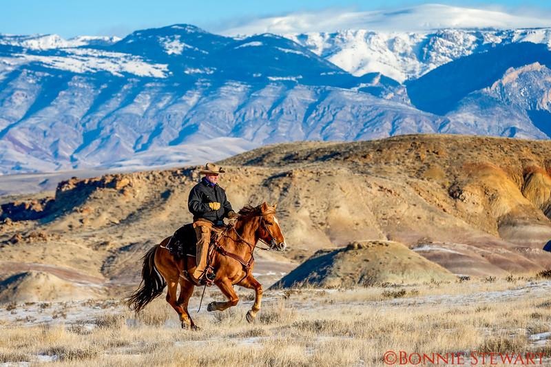 Wrangler Eric riding his horse