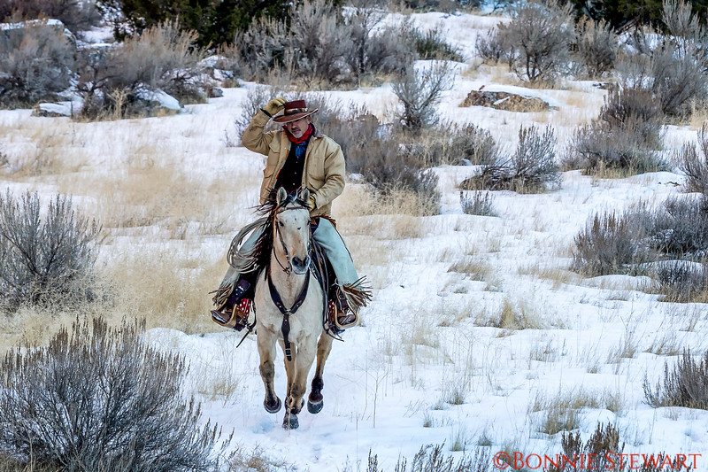 Wrangler Tom running through the snowy canyon