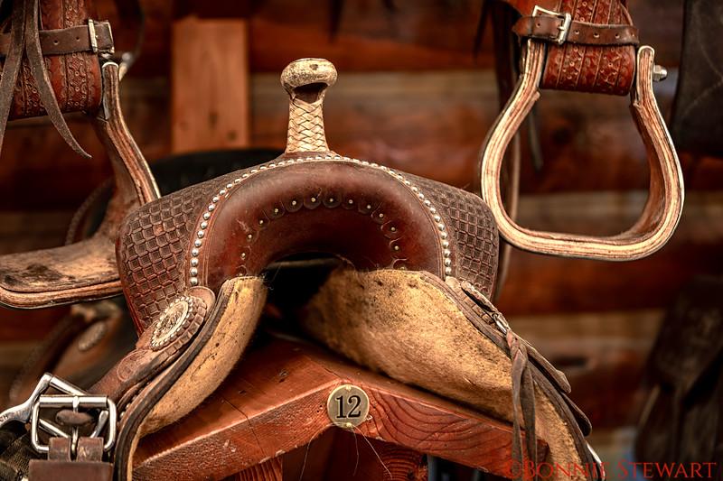 Saddle Details