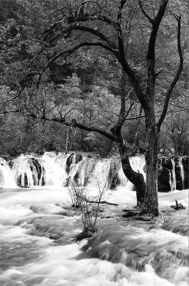 九寨沟,四川。Jiuzhaigou, Sichuan Province.