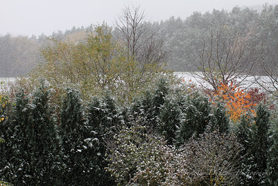 Fall Colors & First Snow-2