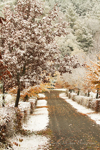 Fall Colors & First Snow-18