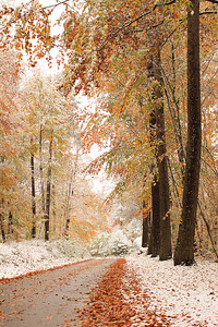 Fall Colors & First Snow-10