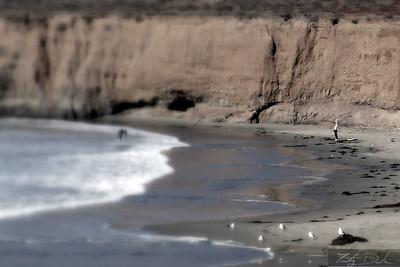 Welcoming the Ocean