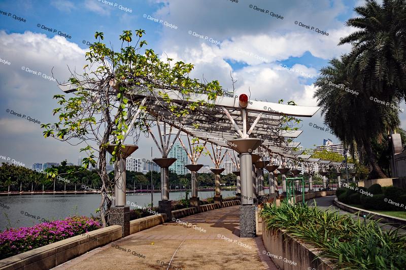 Bangkok, Nov 23rd, 2016 - Benjakitti Park