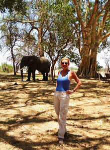 Catherine Howell and resident camp elephant