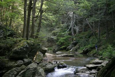 Gunpowder River Hemlock Trail