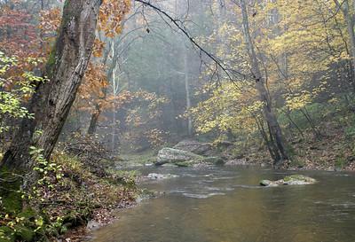 Gunpowder River Fall Color