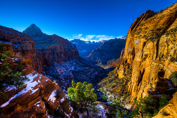 Canyon Overlook, Zion National Park, UT