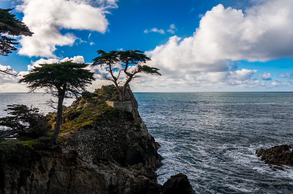 Lone Cypress, Pebble Beach CA